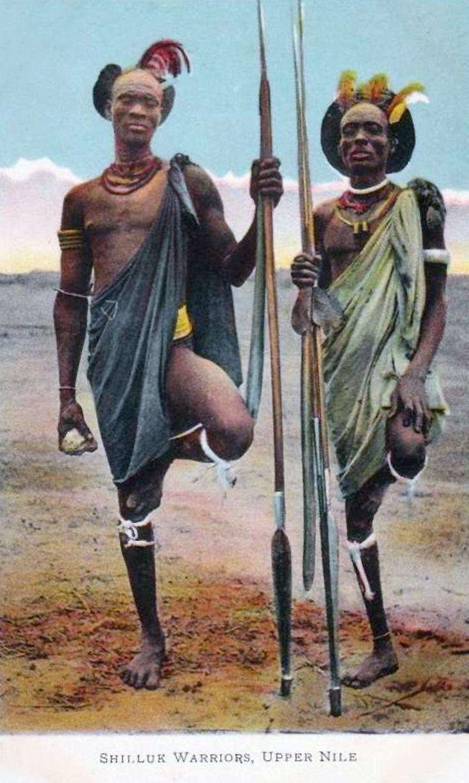 Africa | Shilluk Warriors. Upper Nile, Sudan. ca. 1910s || Vintage postcard' publisher G.N. Morhig. Khartoum. No 498.