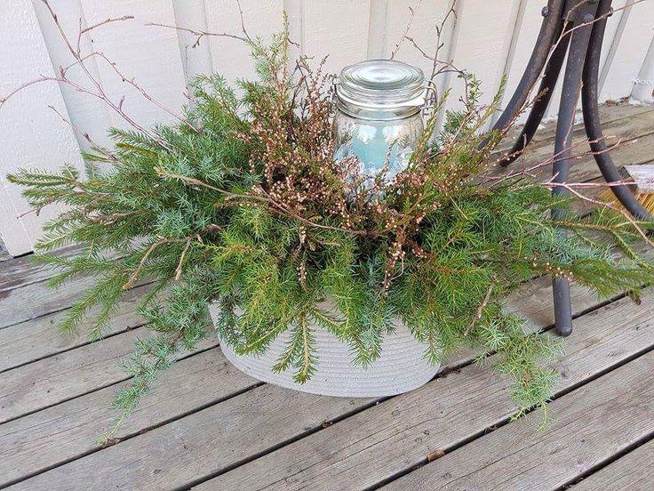 Har laget meg en liten høstdekorasjon fra skogen 😊