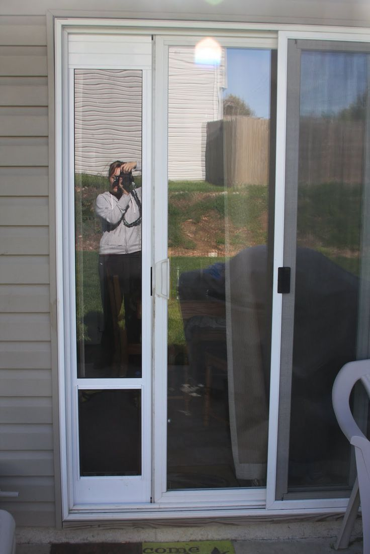 sliding glass doggy door