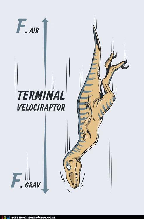Dinosaurs and physics in one delightfully nerdy joke!