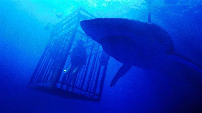 O mais interessante é que o longa rapidamente se desliga das regras criadas por Tubarão e parece ingressar em um novo estilo, usado por Alfonso Cuarón em Gravidade.