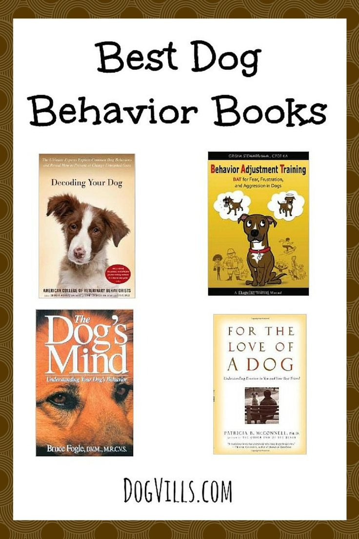 Best Dog Behavior Books for Training Your Pooch: Learn how to give your puppy the best home imaginable with these Best Dog Behavior Books! These books aren't just great for dog training, they really help you better understand your new family friend!