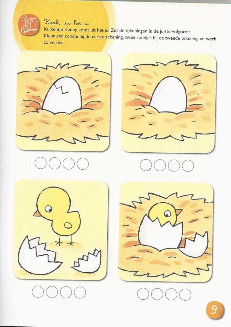 Logisch ordenen: de juiste volgorde van de geboorte van een kuiken