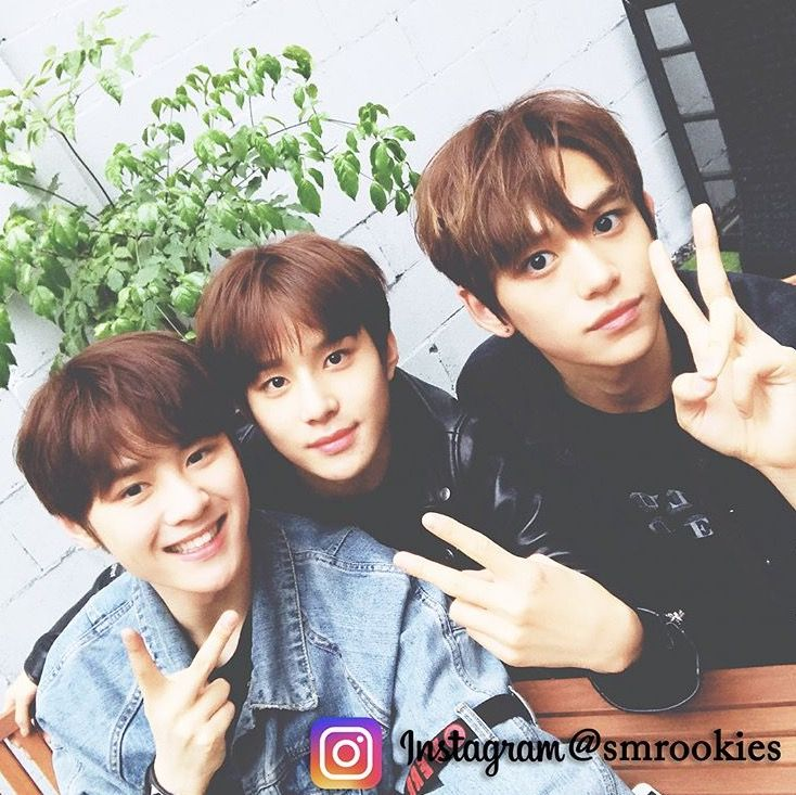 1209 Best NCT/SMrookies Images On Pinterest