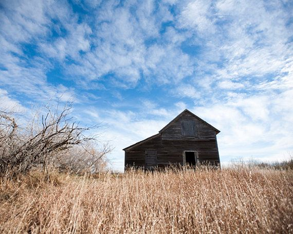 8x10 Metallic Print  I Once Was a Home by AveyChristiansen on Etsy, $30.00
