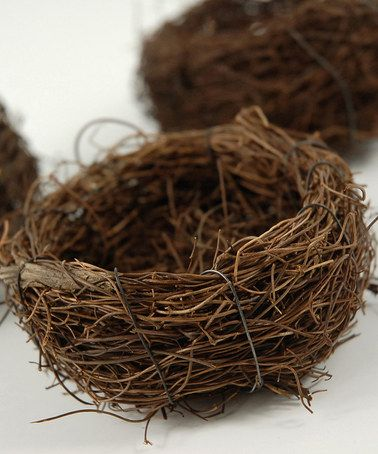 Loving this Decorative Bird Nest - Set of Nine on #zulily! #zulilyfinds
