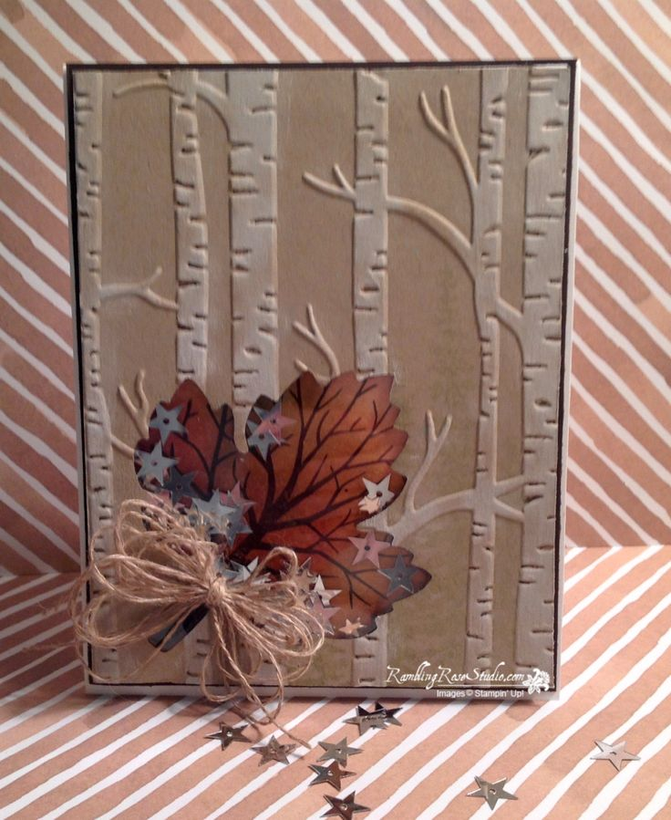 Shaker cards are the most fun cards to make besides maybe a pop up card. So I took a couple of my favorite things (Woodland Embossing Folder and Leaf Framelit