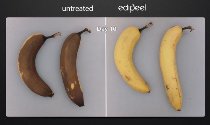 Frutta e verdura: una protezione vegetale per prolungare la durata. L'innovazione di una start-up californiana alla prova del mercato