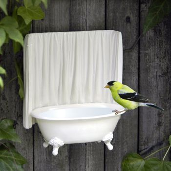 """Makes you think of """"Bird Bath"""" in a whole new way - I really like this :)    ******************************************** #garden #bird #bath (repin) ≈√"""