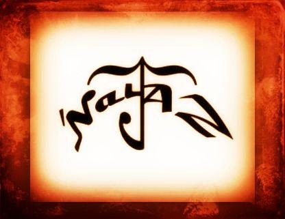 NayAZ Logo