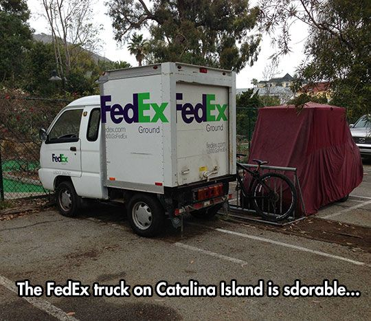 Fedex Freight Quote New 11 Best Fedex Images On Pinterest  Funny Photos Hilarious And