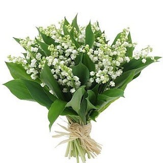 Lily of the Valley - My mom used to grow these and made me a crown from them for my turn to take to 1st grade for crowning The Blessed Virgin in May.