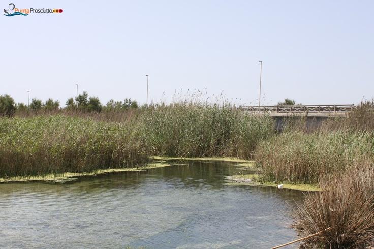 Borraco River, San Pietro in Bevagna, Salento, Pugia