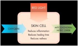 1000 Images About Red Light Therapy On Pinterest Planet