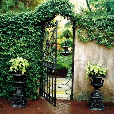 love this combo~ ironwork, ivy and stone!!!