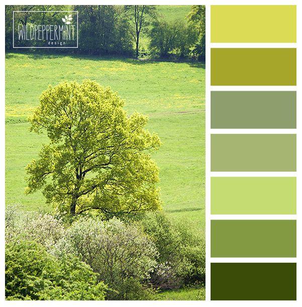 #Farbpalette, Farbinspiration, #grün, #grüntöne, maigrün, hellgrün, gelbgrün…