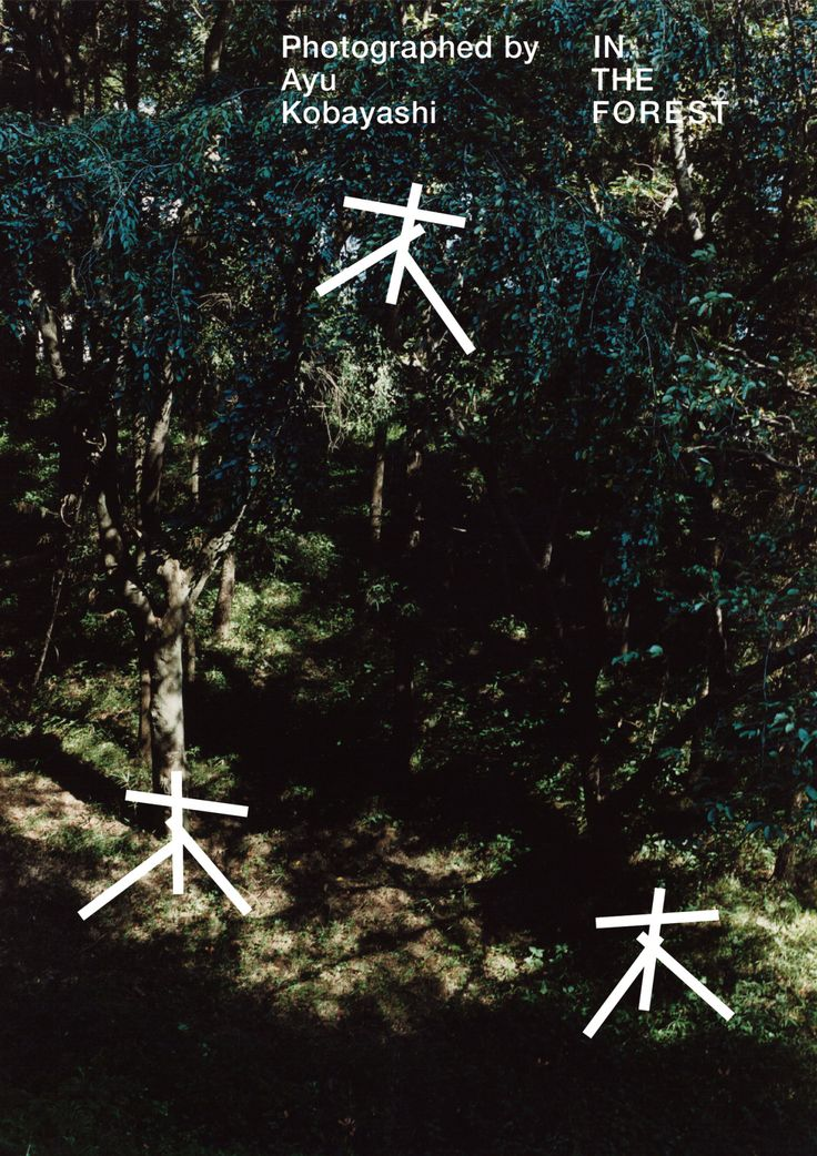 In The Forest - Ayu Kobayashi, Motoi Shito