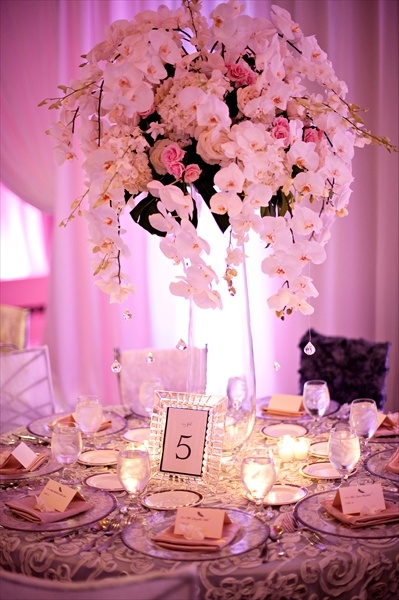 Table 6 Productions South Florida Wedding Coordinators