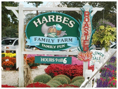 Harbes Farm & Vineyard: THE place for pumpkins. AND OH MY........ THEIR ROASTED CORN. Been going here for as long as I can remember & I never fail to find a perfect pumpkin in their fields.