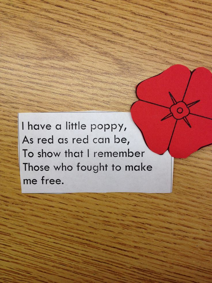 """Veterans Day Poem (no link, just photo; """"I have a little poppy, as red as red can be, to show that I remember those who fought to make me free."""")"""
