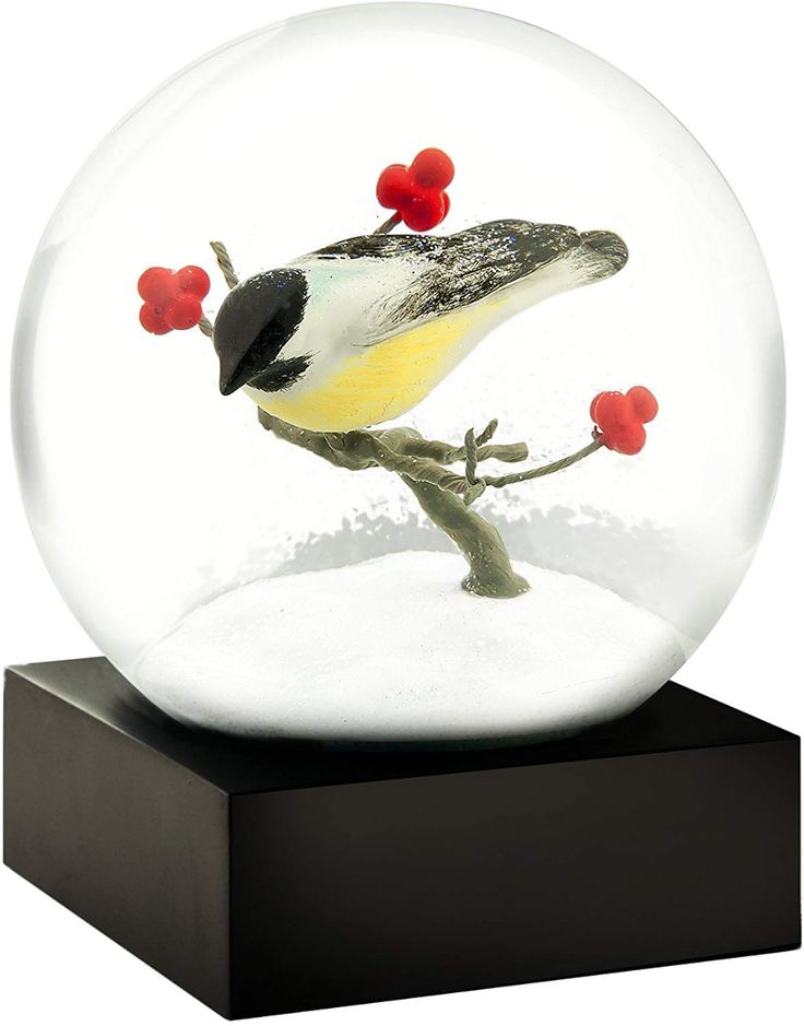 AmazonSmile CoolSnowGlobes Chickadee Cool Snow Globe