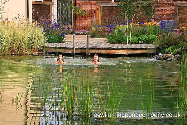 33 best images about natural swimming pools on pinterest water house ponds products and pools - The pond house nature above all ...