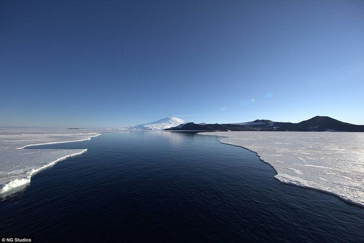 Global warming has affected a large portion of the Antarctica, with ice shelves continuously melting and drifting away revealing large water lakes