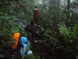 Tropical Wilderness: Bagaimana jika kita tersesat ?