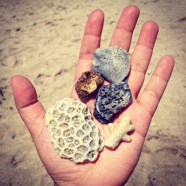 Gift from the ocean - Kuta