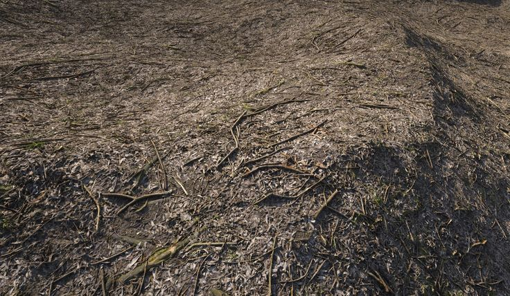 Real Displacement Textures vol 3 Preview | CG Daily News