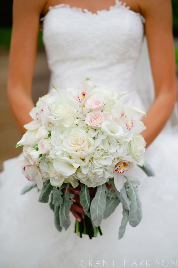 June Bride! So perfect  Grant L Harrison photography out of Little Rock, AR