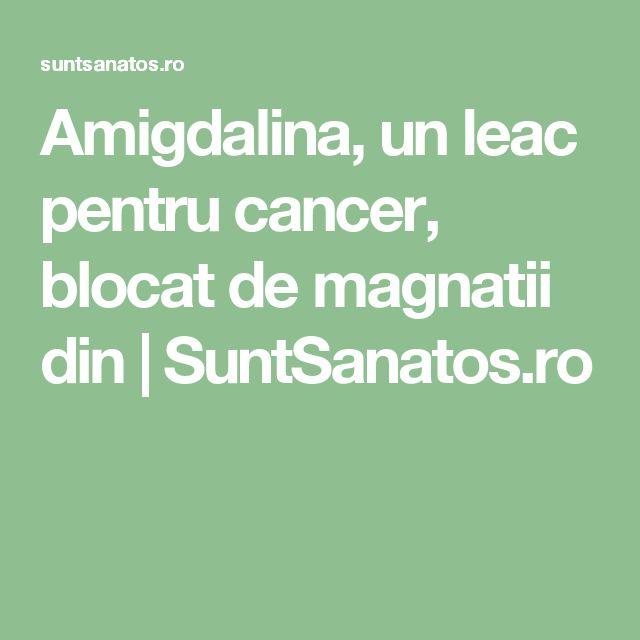 Amigdalina, un leac pentru cancer, blocat de magnatii din | SuntSanatos.ro