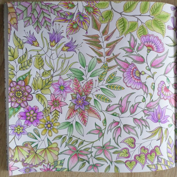coloriages jardin secret coloriage steffy elsass cr a pinterest. Black Bedroom Furniture Sets. Home Design Ideas