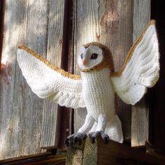 Soren the Barn Owl - free crochet pattern found over at Great Grey Crochet. Pretty amazing!