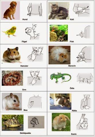 Djur-arkiv - Sida 2 av 2 - Tecken som stöd - Toppbloggare på Womsa