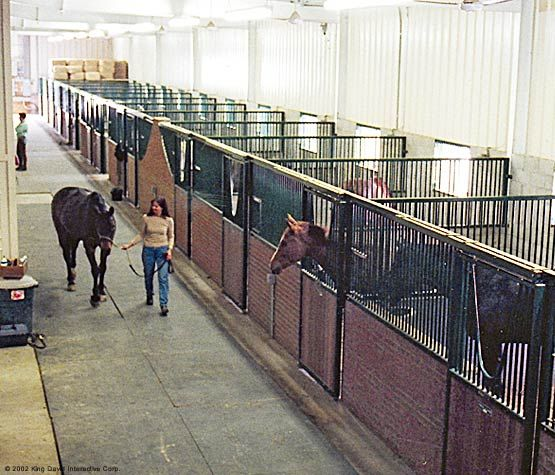 Indoor Riding Arena With Stalls: ... Indoor Riding Arenas And
