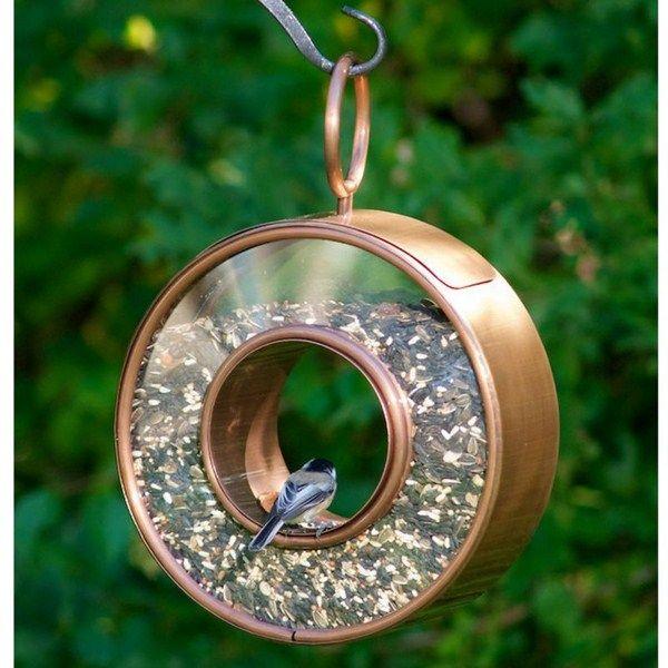 bird feeder (3)