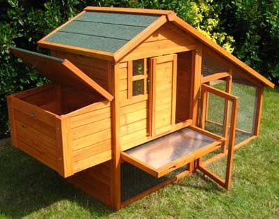 Etonnant Chcken Coop: Free Chicken Coop Plans For 25 Chickens