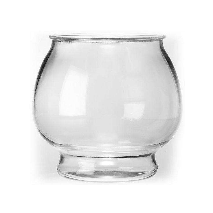25 best glass fish bowl ideas on pinterest for Fish bowl glass
