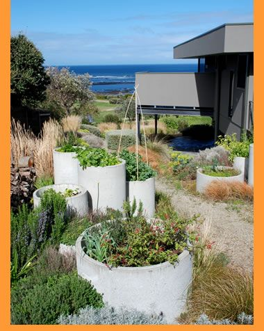 Coastal Garden Design another focus was sustainability a water tank was installed to top up the pool the pizza oven doors are from an old wood burning stove recycled pier Jim Fogarty Landscape Design Gardens Flinders Coastal Garden