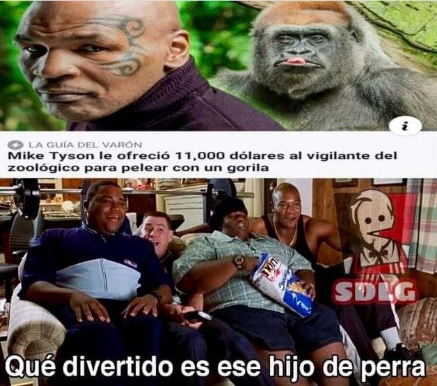 Pin De Miguel Martinez Perez En Memes Memes Divertidos Memes Memes Comicos