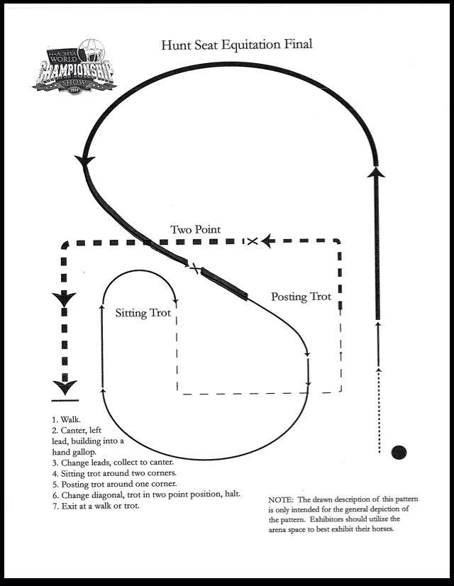 Saddle Seat Equitation Book Of Patterns Www Picsbud Com