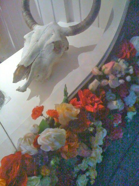 south of the border cronulla interior secrets, cow skull, animal skull