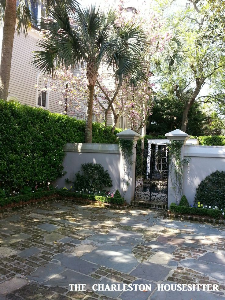 17 best images about gardening charleston gardens on for Landscaping rocks charleston sc