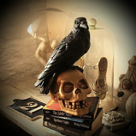 Philip Pullman books Northern lights - The Amber Spyglass - The Subtle Knife Bx  #philippullman #northernlights #witches #amberspyglass #skulls #thesubtleknife #halloween #goldskull #oxfordauthors #spooky #props #crows #books #propstyling #beblackwell #interiorsstyling #middlegradebooks #filmprops #thehistoryofmagic #witchcraft #authorbeblackwell #bookstagram #kidsnovels #trilogy