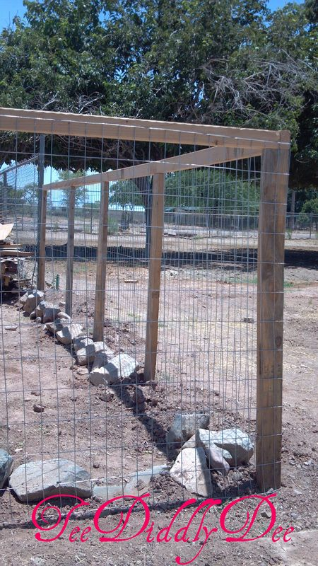 1000 Images About Fencing Ideas On Pinterest Cheap
