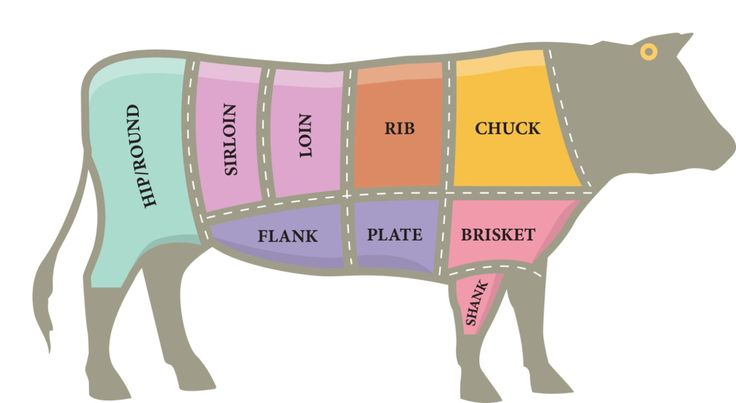 where beef comes from