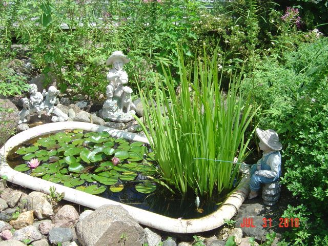 Old bathtub pond - may have to do this with our old bathtub that's just sitting…