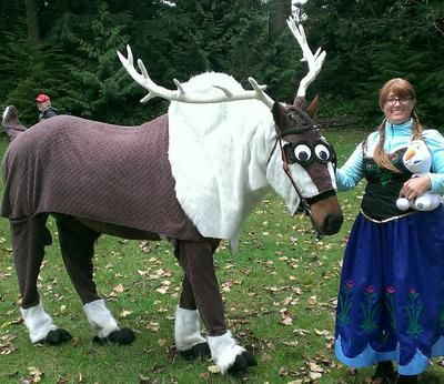 Adorable! Appaloosa gelding, Spider, dressed as Sven from Frozen for his horse Halloween costume!