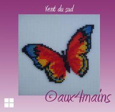 .Butterfly Vent du Sud hama perler by aux4mains